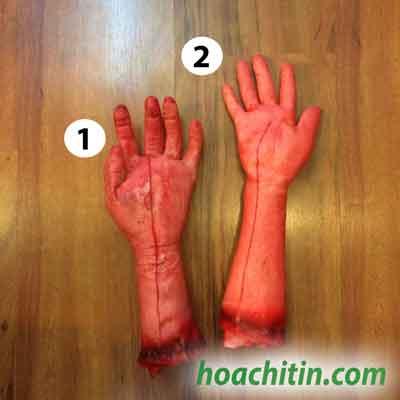Cánh tay máu