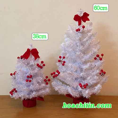 Cây Thông Noel Mini Trắng Gắn Trái Đỏ 60cm