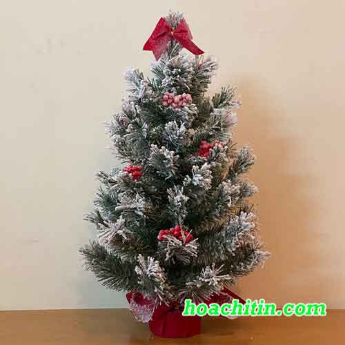 Cây Thông Noel Mini Phủ Tuyết Size 60cm