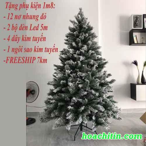 cây thông noel và trang trí giáng sinh
