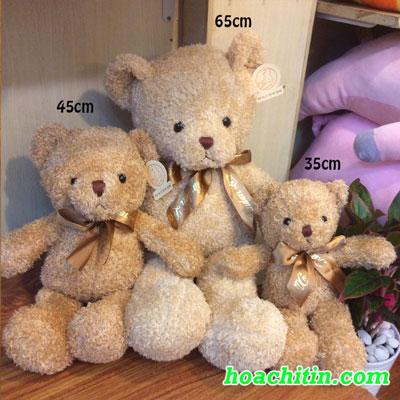 Thú Nhồi Bông Teddy Lông Chỉ Thắt Nơ  35cm