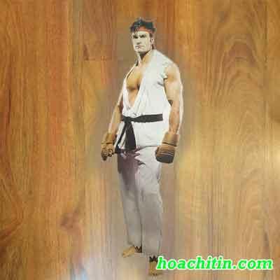 Trang phục võ sĩ trắng